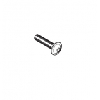 Thermostat Bolt for Lower Mount